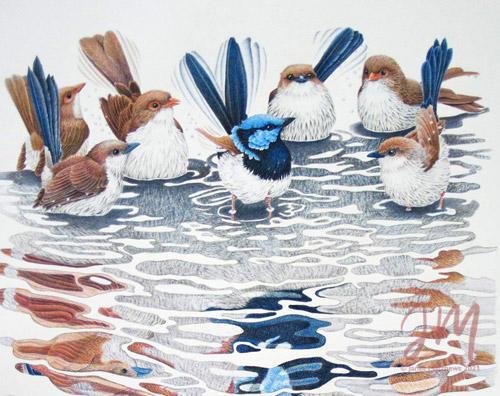 "Janet Matthews wildlife artwork Fairy Wrens ""It's bath time!"""