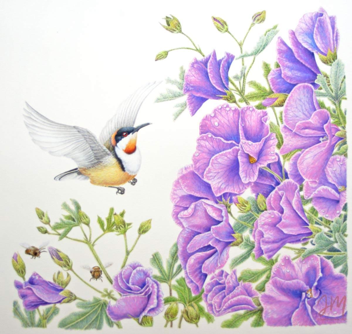 janet matthews wildlife artist